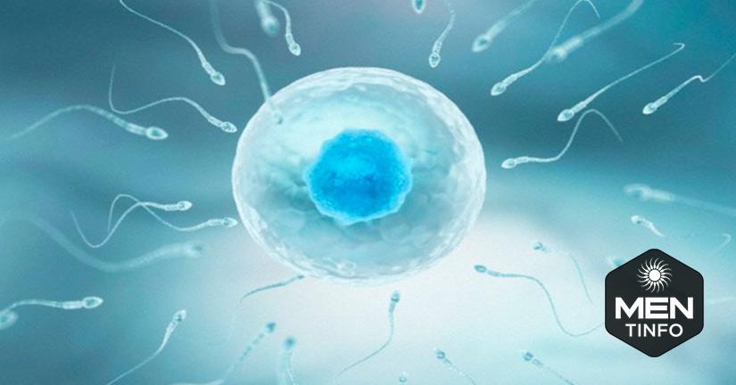Trước khi có kế hoạch sinh con nam giới cần bổ sung gì để tăng chất lượng tinh trùng? Lời khuyên của chuyên gia