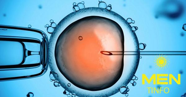 Quy trình thụ tinh trong ống nghiệm (IVF) diễn ra như thế nào?