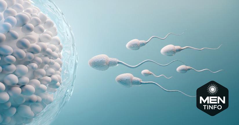 Tăng gấp bội khả năng thụ thai với 10 thực phẩm tốt cho tinh trùng